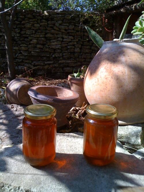miel de châtaigniers